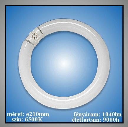22W fénycső nagyítós asztali lámpához LAMP 00000/L