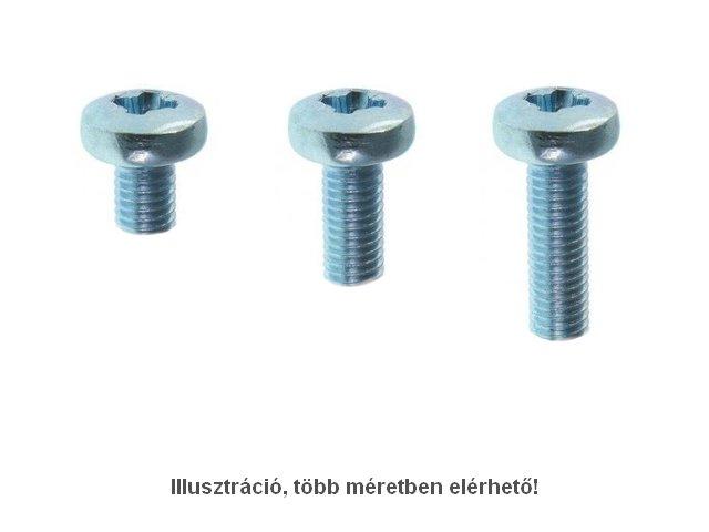 Acél csavar M2.5 x 12mm 0,45mm menet emelkedés, hengeres, Ph1 SCREW-M2.5X12.0H_PH1